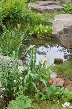 RHS Chelsea Flower Show 2015 – The Laurent-Perrier Chatsworth Garden – Best Show Garden Der Laurent-Perrier Chatsworth-Garten Dan Pearson RHS Chelsea Flower Show 2015