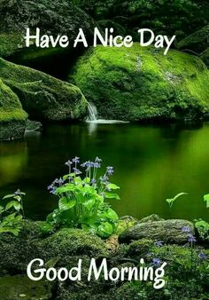 27 Trendy Good Morning Beautiful Quotes For Her Night Good Morning Nature Images, Good Morning Friends Images, Good Morning Beautiful Pictures, Latest Good Morning Images, Good Morning Cards, Good Morning Wednesday, Good Morning Picture, Good Morning Greetings, Morning Pictures