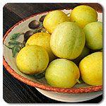 Organic Lemon Cucumber...my kids love these.