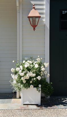white roses are so pretty.maybe consider white roses and white hydrangea along front fence White Gardens, Farm Gardens, White Roses, White Flowers, Summer Flowers, Porches, Fall Containers, Flower Containers, Knockout Roses