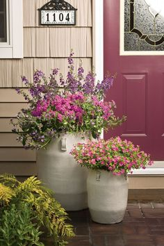 Professionally designed look—pairing door color with coordinating container plantings. Don't be afraid to paint your door from year to year. It's an inexpensive way to give your home a fresh look. Thriller, filler, spiller in larger urn Will be in color a