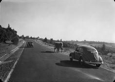 Fotografia sem data. Produzida durante a actividade do Estúdio Mário Novais: 1933-1983. [CFT003 122399.ic]