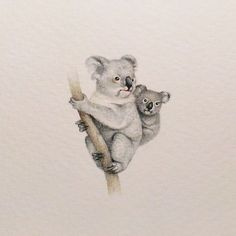 I Started Drawing Miniature Paintings Because I Did Not Have Time For Bigger Drawings And Now It's My Passion koala bear Cute Koala Bear, Baby Koala, Coala Tattoo, Animal Paintings, Animal Drawings, Koala Illustration, Easy People Drawings, Image Deco, Bear Drawing