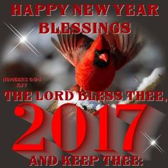 Good Morning Happy New Year 2017 New Year Quotes For Friends, Happy New Year Quotes, Quotes About New Year, Happy Quotes, New Years Eve Pictures, Holiday Pictures, Good Morning Happy, Good Morning Quotes, New Years Prayer