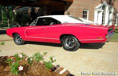 1970 440 Six Pack Charger R/T Panther Pink (1 of 2)