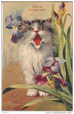 Vintage Cat Postcard -- by artist Maurice Boulanger, French