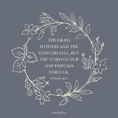 The grass withers and the flowers fall, but the word of our God endures forever. - Isaiah 40:8