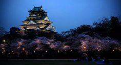 Osaka Castle by Night🌙 . . . . . #japan #japón #japon #nippon #igers #instadaily #instatravel #travel #photography #love #picoftheday #landscape #photographer #日本 #instagood #素敵 #jco #japancommunity #visitjapan #amazing #traveling #travelphotography #travelgram #amazingview #madeinjapan #japanese
