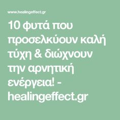 Knee Exercises, Outdoor Pots, Best Sites, Natural Treatments, Christmas Balls, Science And Nature, Immune System, Healthy Tips, Trees To Plant