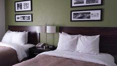 Hotel  (bedroom ideas)