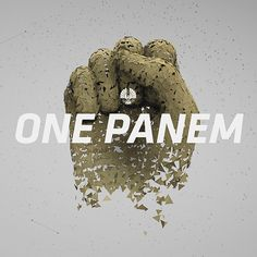 """Love the bold design and clean typography. The navigation is easy to use. Really love the animation in the """"one panem"""" section."""