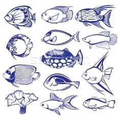 fish vector - Google Search