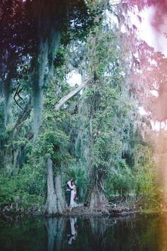 Rainbow at a Magnolia Plantation South Carolina