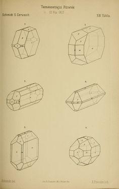 v. 1-2 1877-78 - Természetrajzi Füzetek kiadja a Magyar nemzeti Muzeum. - Biodiversity Heritage Library