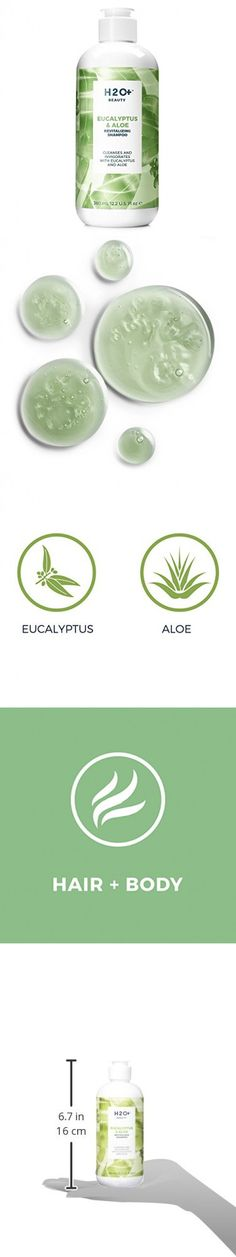 H2O+ Beauty Eucalyptus & Aloe Revitalizing Shampoo, 12.2 Ounce