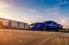 Mustang - a rolling shot of mustang hope you like , regards dear friends.