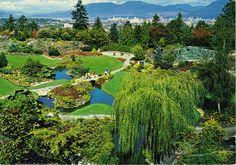 Queen Elizabeth Park, Vancouver, B. C  My favorite small park EVER