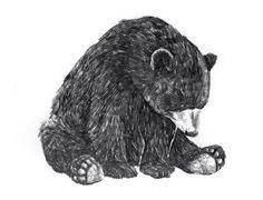 polar-bear-tattoo-ideas.jpg