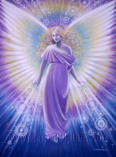 Star Dolphin Gallery - Angel Realm - 18 Angel Light Beautiful