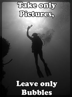 Some scuba diving quotes for you to share. On the left side of the screen you will see the icons for sharing. Scuba Diving Quotes, Best Scuba Diving, Scuba Diving Gear, Cave Diving, Sea Diving, Laos, Scuba Diving Equipment, Diving Board, Diving Suit