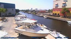 Live webcam at the The Cape Coral Boat Club in Cape Coral, Florida. Camera overlooks the marina and all the boat traffic located on the canal in the back.