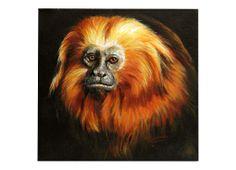 Fauna brasileira - mico-leão-dourado tela 30x30cm