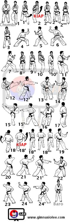 Taeguk Pall Chang. 8º pumse Korean Martial Arts, Mixed Martial Arts, Aikido, Judo, Tai Chi, Taekwondo Techniques, Jiu Jitsu, Taekwondo Quotes, Shotokan Karate Kata