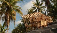 estrutura em bambu