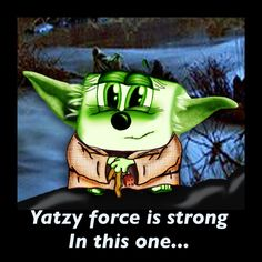 Yatzy force...  #starwars