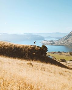 Late morning has always been my favorite time to explore. The sun is just warming up and the day feels fully awake.  Thanks @wanakahelihikes and @aspiringheli for showing me a new view.