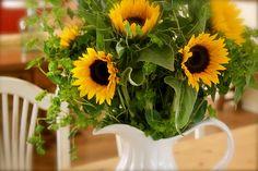 a sunny arrangement