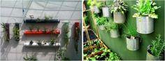Ideas para tener un huerto en el patio