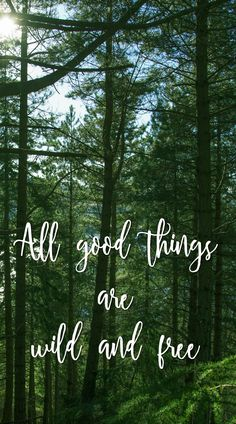 All good things are wild and free… don't you agree? #nature #quote #trees