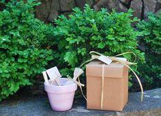 Vasetto con bulbo nelle tonalità pastello rosa