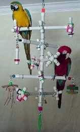 ♥ Pet Bird Stuff ♥ homemade bird playstand idea