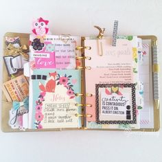 janettelaneblog: This is the goals section in my Kikki K. It's a work in progress. So far I have 2015 goals and seasonal goals. Open to ideas! #janettelaneplans
