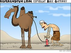 DESCRIPTION: Man pumping up a flat hump on a camel CAPTION: