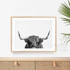 Highland Cow Print Black and White Highland Cow Wall Art by   Etsy