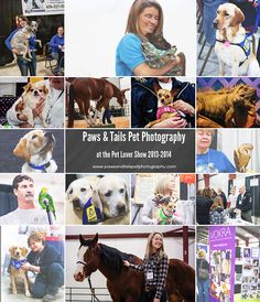 The Pet Lover Show is Coming! The Pet Lover Show is Coming! Yep that's right! It's that time of year again! It's time for the 3rd annual Pet Lover Show at Tradex here in Abbotsford BC February 27 -...