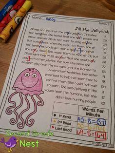 Fluency with Ocean Animals