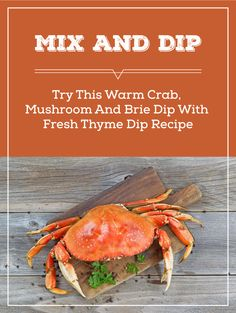 Having a dinner party? Crab dip is the perfect dip to impress your guests at any event. Try this warm crab dip recipe for your next party. Click the pin for the crab dip recipe. Crab Dip Recipes, Seafood Recipes, Appetizer Recipes, Yummy Recipes, Appetizers, Healthy Recipes, Fun Food, Good Food, Yummy Food