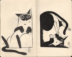 Scanned the Cat Collection from my #Inktober sketchbook || via emilenox