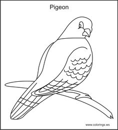 Free Pigeon Kids Colorings Pages You Can Print And Color