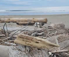 """New beginnings are often disguised as painful endings"" Lao Tzu.  Driftwood from Gisborne New Zealand"
