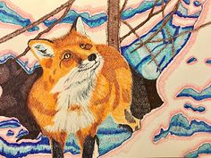 Red fox ontario canada drawing by suzanne berton Funny Animal Videos, Funny Animals, Canadian Art, Red Fox, Animal Crafts, Japan Fashion, Animal Design, Girl Humor, Dog Friends