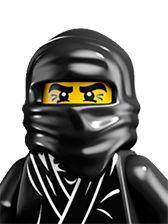 Series #1 - Ninja