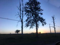 O sol abre seus olhos para o mundo