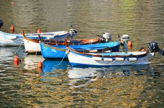 More boats in Vernazza