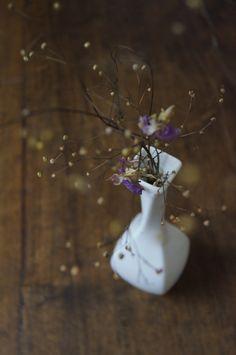 """Alguns chamam de mato, num vaso se torna raro."" #HerSander @FlorDeMato"