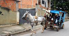 Sem opção de transporte, moradores temem lei que põe fim a charretes no RJ